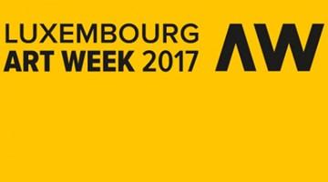 Contemporary art exhibition, Luxembourg Art Week at Galerie Lelong & Co. Paris, 13 Rue de Téhéran, Paris