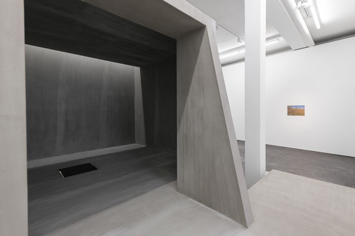 Exhibition view: Cristian Rusu, The Only Thing I Am Sure About in this Life Lies Above My Head, Galeria Plan B, Berlin (6 March–11 April 2020).Courtesy Galeria Plan B.