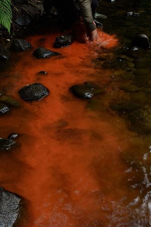 Red river rock Dumfriesshire, Scotland 19 August 2016 by Andy Goldsworthy contemporary artwork moving image