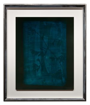 Stem of Leaves and Flowers, circa 1834-1839 by Hiroshi Sugimoto contemporary artwork