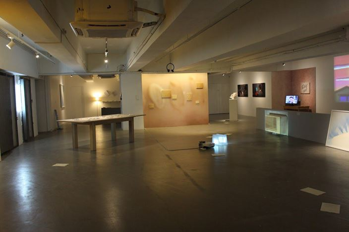 Exhibition view: Group Exhibition, Crush, Para Site, Hong Kong (15 September–25 November 2018). Courtesy Para Site.