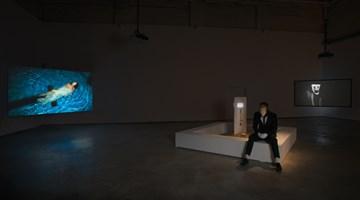 Contemporary art exhibition, Lin Yuqi, Qfwfq at ShanghART, M50, Shanghai