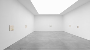 Contemporary art exhibition, Cathy Wilkes, Solo exhibition at Xavier Hufkens, Brussels