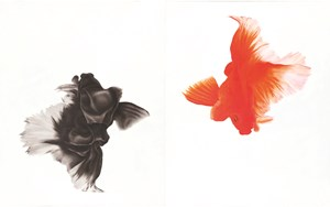 Instinct No.13 本能 No.13 by Feng YiChen contemporary artwork