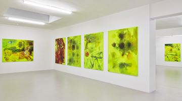 Contemporary art exhibition, Reena Spaulings, Lion Hunt at Campoli Presti, London