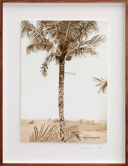 Postcards from Africa: Man climbing palm by Sue Williamson contemporary artwork