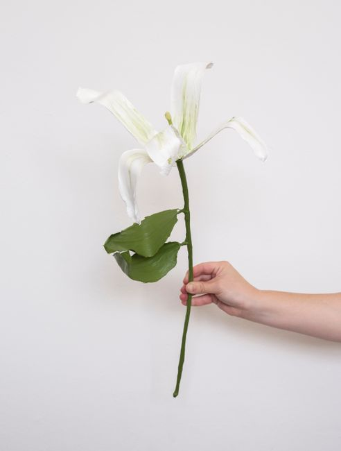 White Paint Lily by Gabi By Gabrielle Kruger contemporary artwork