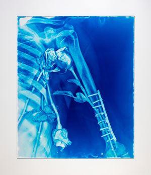 Blood Blue No.24 by Hu Weiyi contemporary artwork