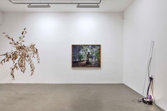 Exhibition view: Group Exhibition, DEMAIN EST LA QUESTION, Galerie Chantal Crousel, Paris (27 June–25 July 2020). Courtesy Galerie Chantal Crousel. Photo: © Thomas Lannes.