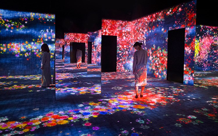 Exhibition view: teamLab, Living Digital Forest and Future Park, Pace Gallery, Beijing (20 May–19 November 2017). Courtesy Pace Gallery, Beijing.