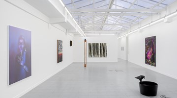 Contemporary art exhibition, Group Exhibition, birds, cigarettes, guitars, eyes and trees at rodolphe janssen, Brussels