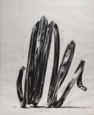 Undetermined Line by Bernar Venet contemporary artwork works on paper, drawing