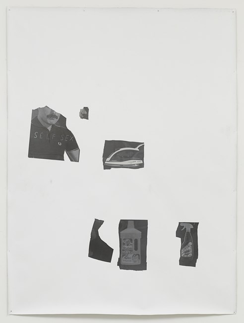 Self Sex by Henrik Olesen contemporary artwork