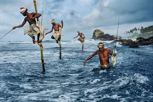 Stilt fishermen, Wellgama, South Coast, Sri Lanka by Steve McCurry contemporary artwork