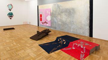 Contemporary art exhibition, Luisa Kasalicky, Tiefschlaf in der Stadt at Galerie nächst St. Stephan Rosemarie Schwarzwälder, Vienna