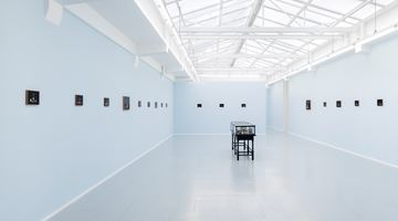 Contemporary art exhibition, Sanam Khatibi, Cyanide at rodolphe janssen, Brussels, Belgium