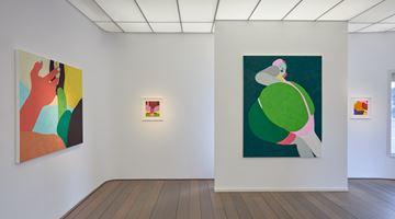Contemporary art exhibition, Helen Beard, The Desire Path at Reflex Amsterdam, Netherlands