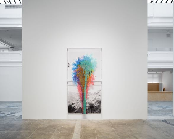 Exhibition view: Charles Gaines, Palm Trees and Other Works, Hauser & Wirth, Los Angeles (14 September 2019–5 January 2020).© Charles Gaines.Courtesy the artist and Hauser & Wirth.Photo: Fredrik Nilsen.
