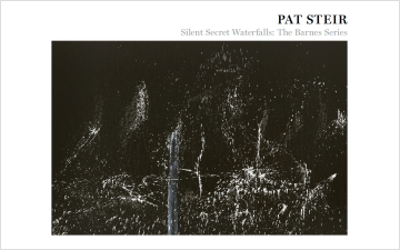 Pat Steir, Silent Secret Waterfalls: The Barnes Series