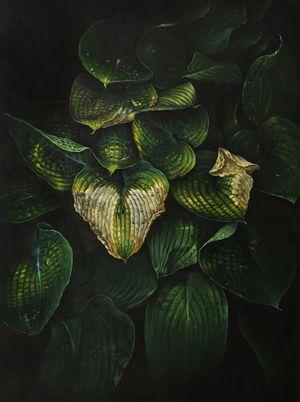 Hosta by Helena Parada Kim contemporary artwork