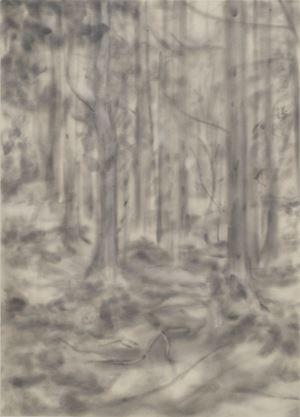 Forest (201902) by Naofumi Maruyama contemporary artwork
