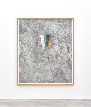 Rainbow Herbicides #2 by Thu Van Tran contemporary artwork