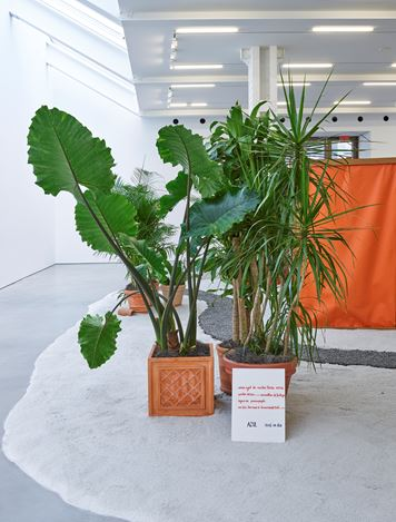 Exhibition views: Hélio Oiticica, Lisson Gallery, West 24th Street, New York (28 October 2020–23 January 2021).© Estate of Hélio Oiticica. Courtesy Lisson Gallery.