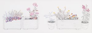 Containers and Potted Plants in My House by Yukiko Suto contemporary artwork
