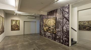 Contemporary art exhibition, Cássio Vasconcellos, Dryads and Fauns at Galeria Nara Roesler, Rio de Janeiro