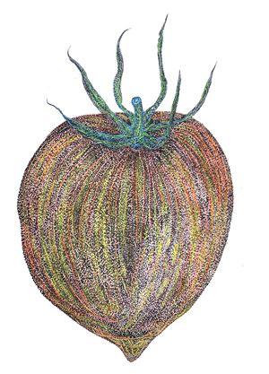 WfH Series - Miss Tomato by Eddie Lui contemporary artwork