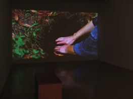Kang Seung Lee's Gardens of Hope, Ex-votos of Symptoms: Paganism and Queer