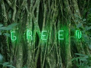 If We Delete Green, If We Start Caring About Plants by Ma Haijiao contemporary artwork