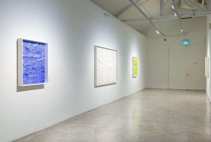 Exhibition view:Jason Martin: Meta physical, STPI, Singapore (23 March–4 May 2019). Courtesy STPI.