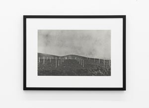Earthworks Brooklyn: Brooklyn, NY (Lightning Field, after Walter Maria) by Vik Muniz contemporary artwork