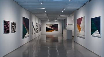 Contemporary art exhibition, Ricardo Mazal, Full Circle at Sundaram Tagore Gallery, Chelsea, New York