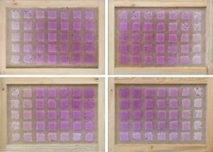 Beecolour Series I-P+60E18N by Ren Ri contemporary artwork