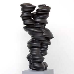 Different Points of View by Tony Cragg contemporary artwork sculpture