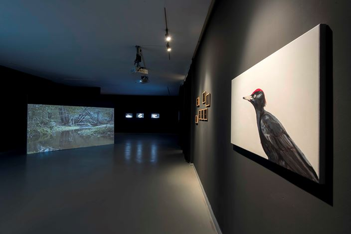 Exhibition view: Elmas Deniz, Three Hues of Water, Zilberman Gallery, Istanbul (14 December 2019–21 February 2020). Courtesy Zilberman Gallery.