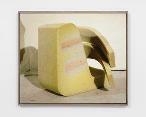 Hairy Armature by Lucas Blalock contemporary artwork