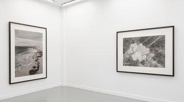 Contemporary art exhibition, Gunnel Wåhlstrand, Gunnel Wåhlstrand at Andréhn-Schiptjenko, Paris