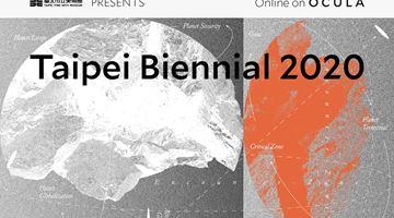Contemporary art exhibition, Taipei Biennial 2020 at Taipei Fine Arts Museum