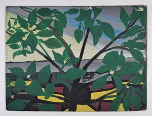 Tropical Plant by Frank Walter contemporary artwork