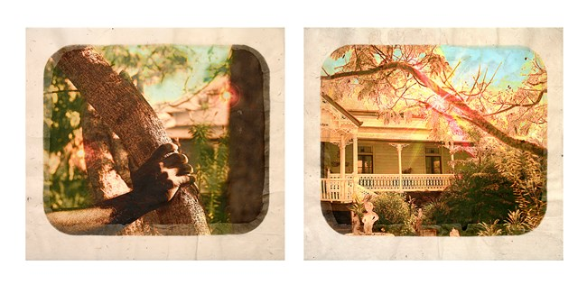 Plantation (Diptych No. 11) by Tracey Moffatt contemporary artwork