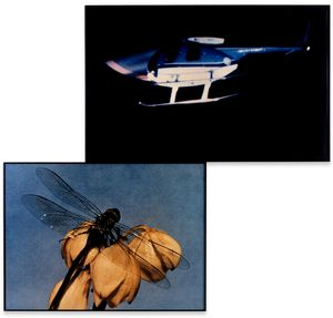 Helicopter and Dragonfly (Observing/Observed) by John Baldessari contemporary artwork photography