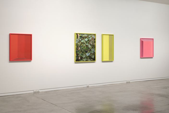 Exhibition view: Cracker, Two Rooms, Auckland (27 November 2020–30 January 2021). Courtesy Two Rooms.