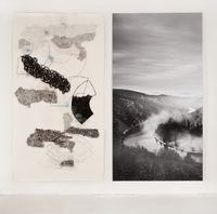 The Saar (and Subjectivity) Section 4 by Denise Green contemporary artwork works on paper