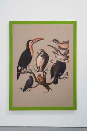 Sample of American birds II by Gabriela Bettini contemporary artwork