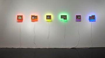 Contemporary art exhibition, Brook Andrew, Paradise at Tolarno Galleries, Melbourne, Australia
