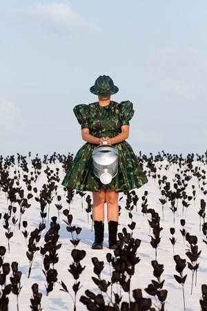 Os Jardins Pensus da América # 2 by Berna Reale contemporary artwork