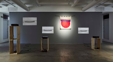 Contemporary art exhibition, Samson Kambalu, Nyasaland Analysand at Goodman Gallery, Johannesburg